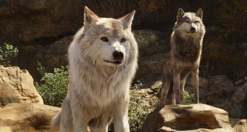 famous wolves and famous wolf names