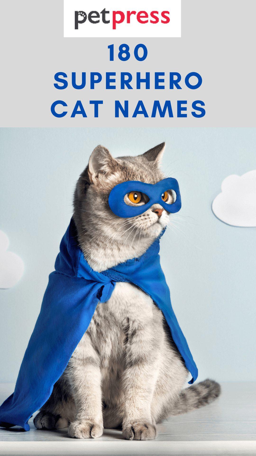 superhero-cat-names