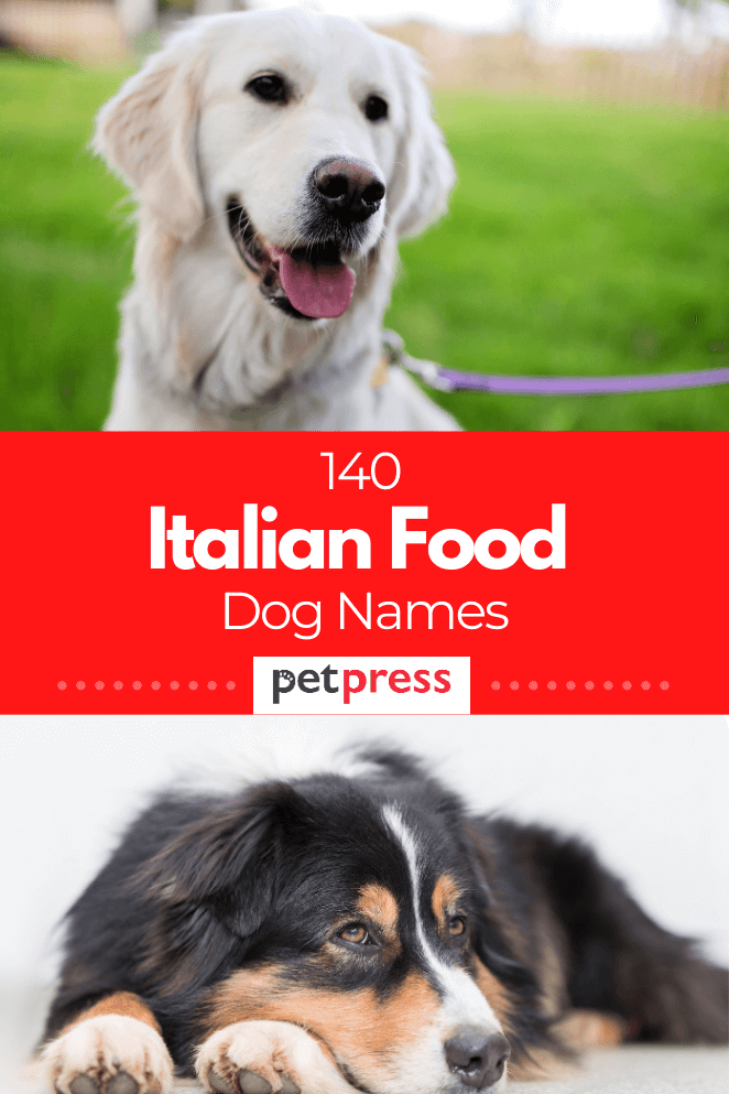italian-food-dog-names