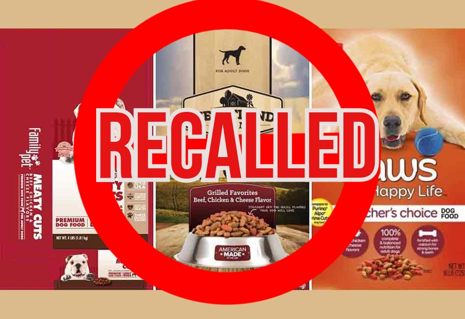 Warning! These 10 Dog Foods Have Been Recalled (2020 ...