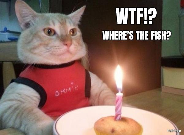 cat meme generator - where's the fish?