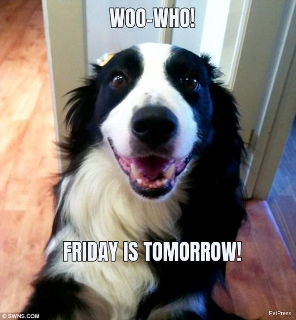 WOO-WHO!... FRIDAY IS TOMORROW!