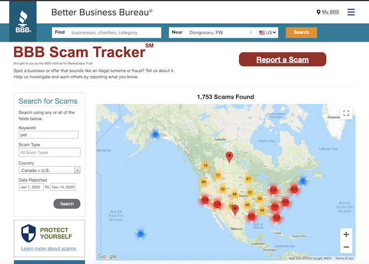 BBB Scam tracker | Petpress