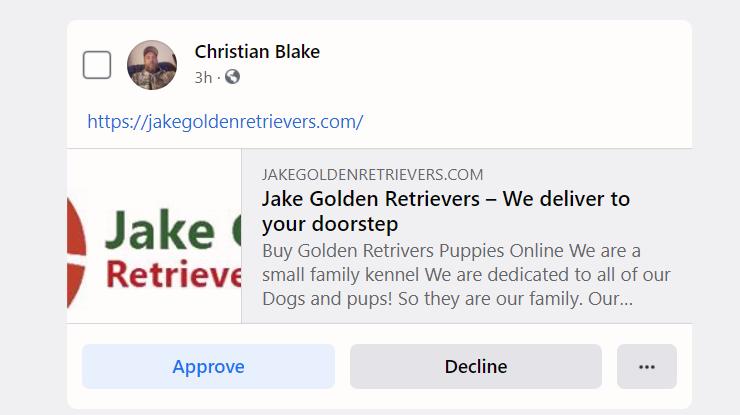 christian black puppy scam