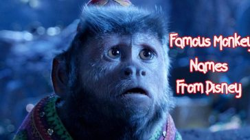 famous-disney-monkey-name