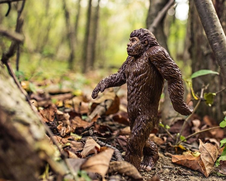 Monkey Name Generator | Petpress - Survive Wild