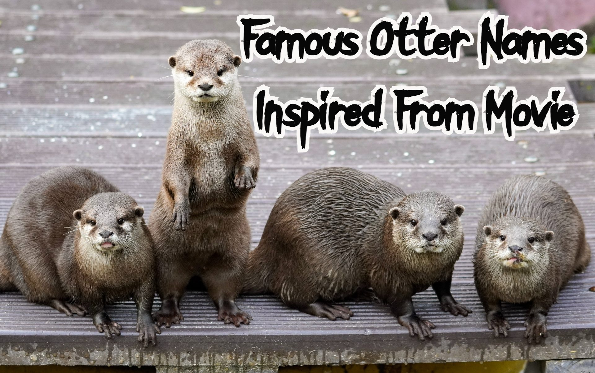 famous-otter-names-movie