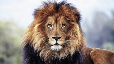 unique lion names