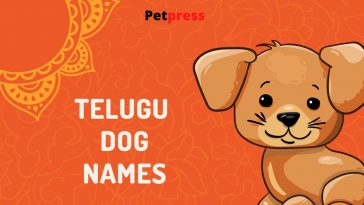 telugu-dog-names