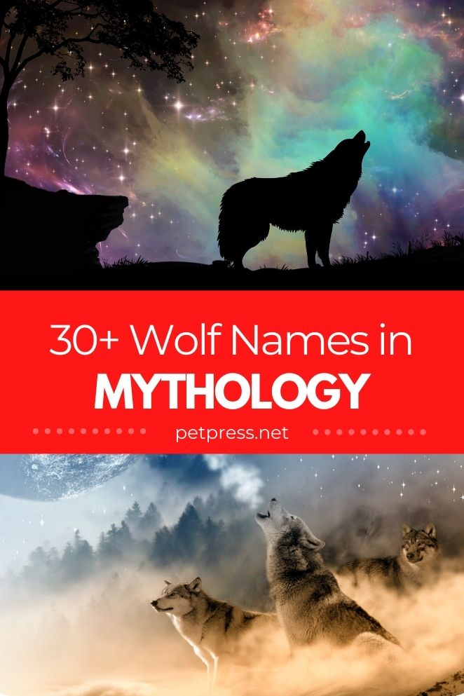 wolf names in mythology for naming a pet