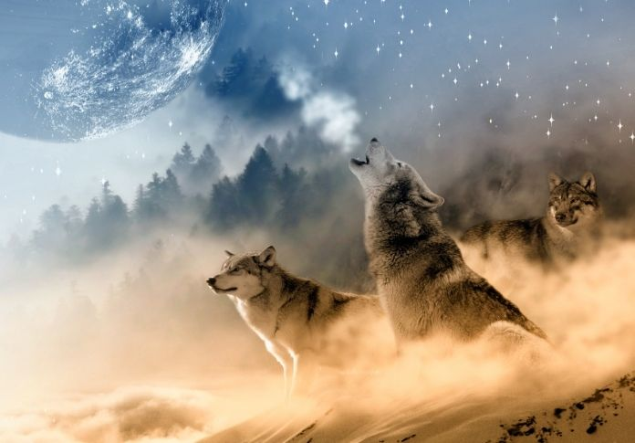 wolf names in mythology - featured