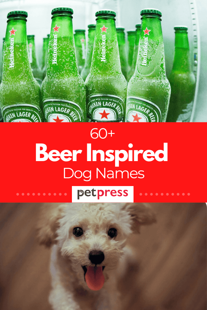 beer-inspired-dog-names