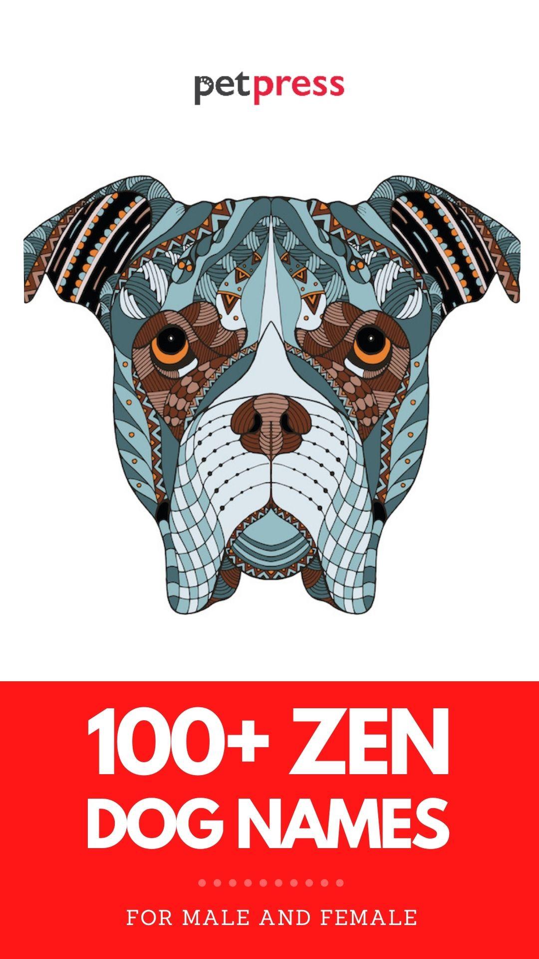 zen dog names for naming your dog