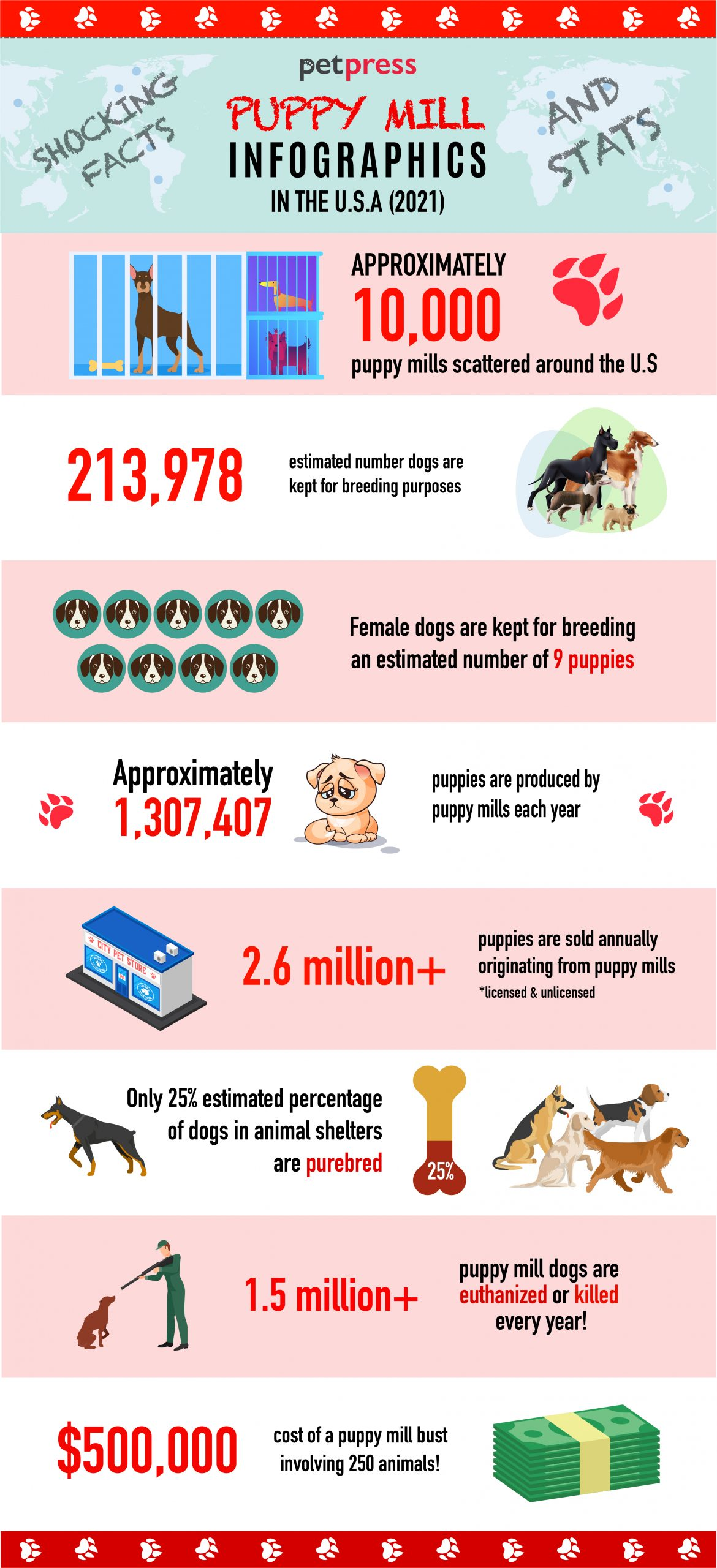 puppy mill stats - infographics