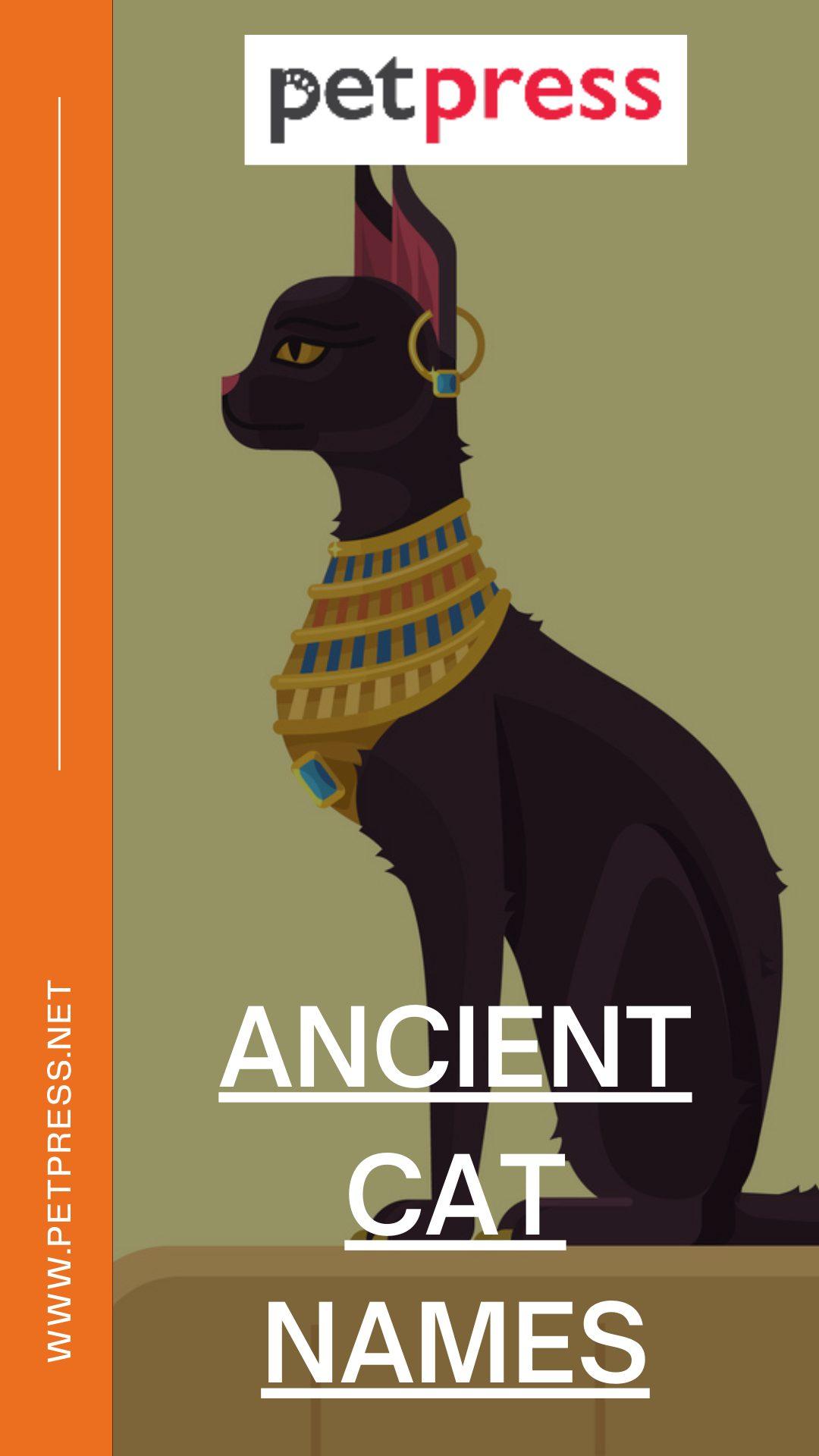 ancient-cat-names