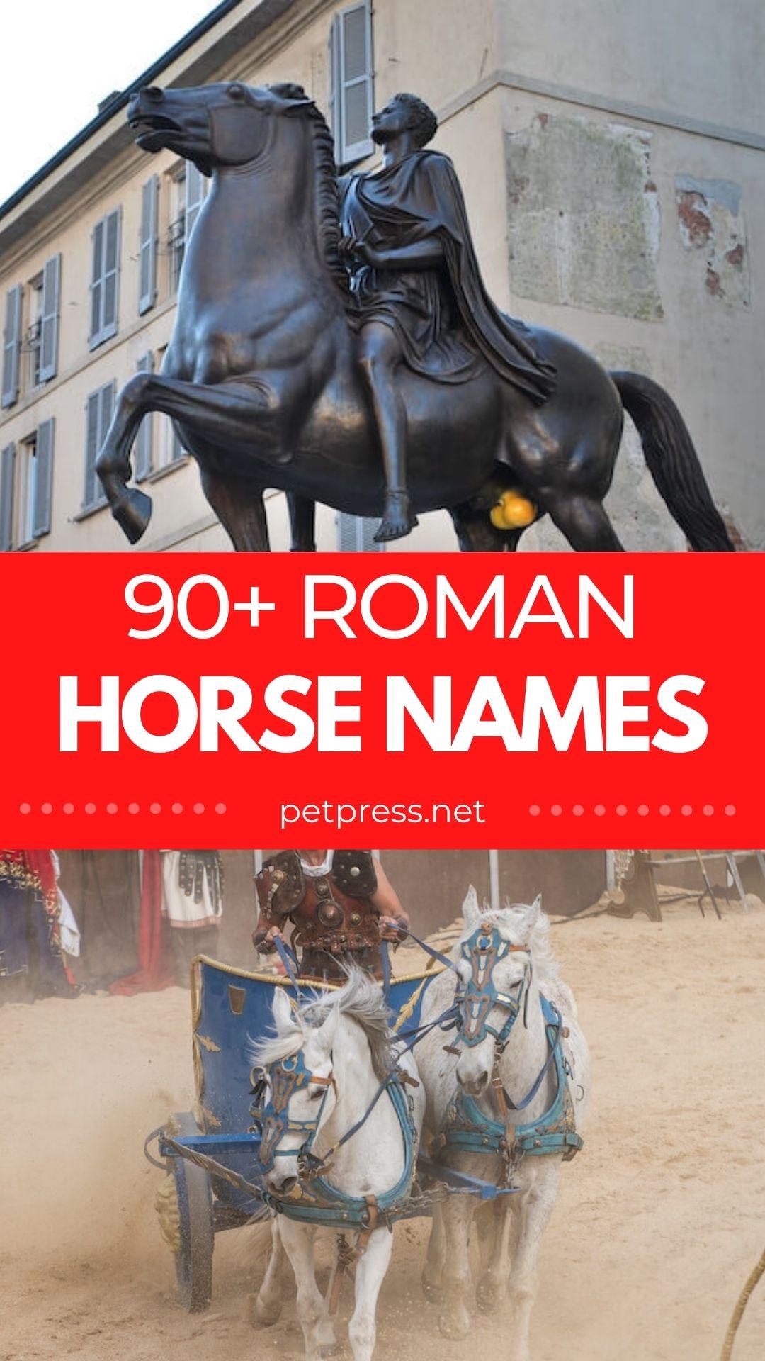 90+ roman horse names