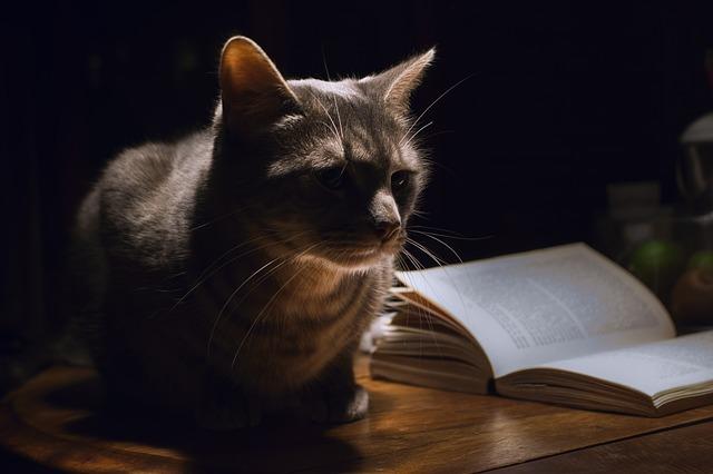 male-biblical-cat-names