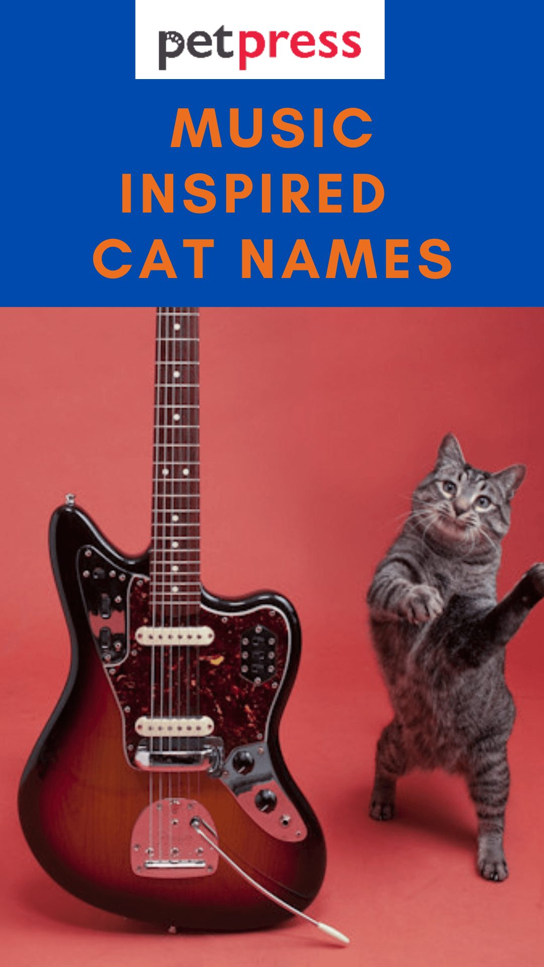 music-cat-names