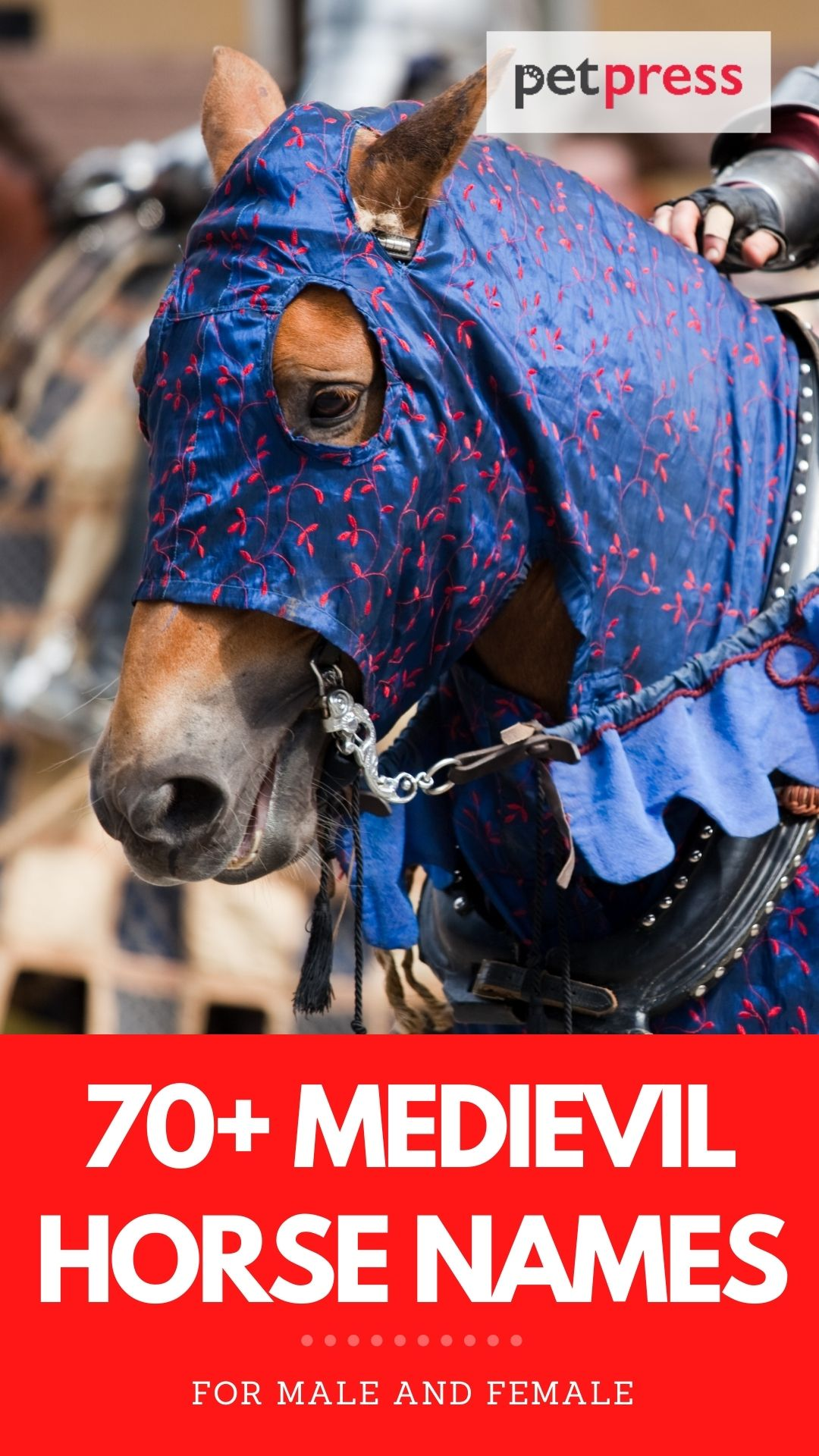 70+ medievil horse names