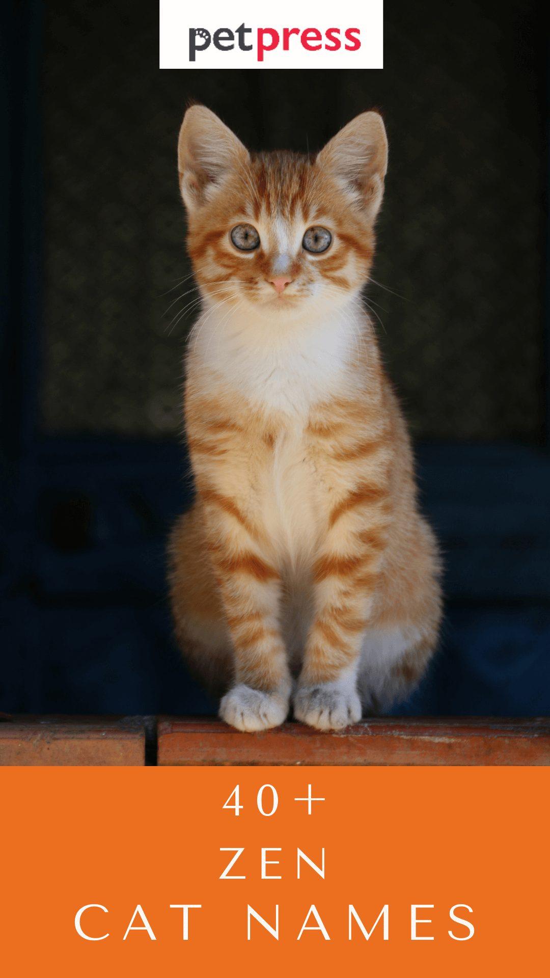 zen-cat-names