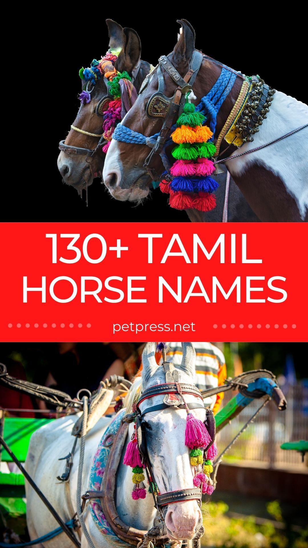 tamil horse names