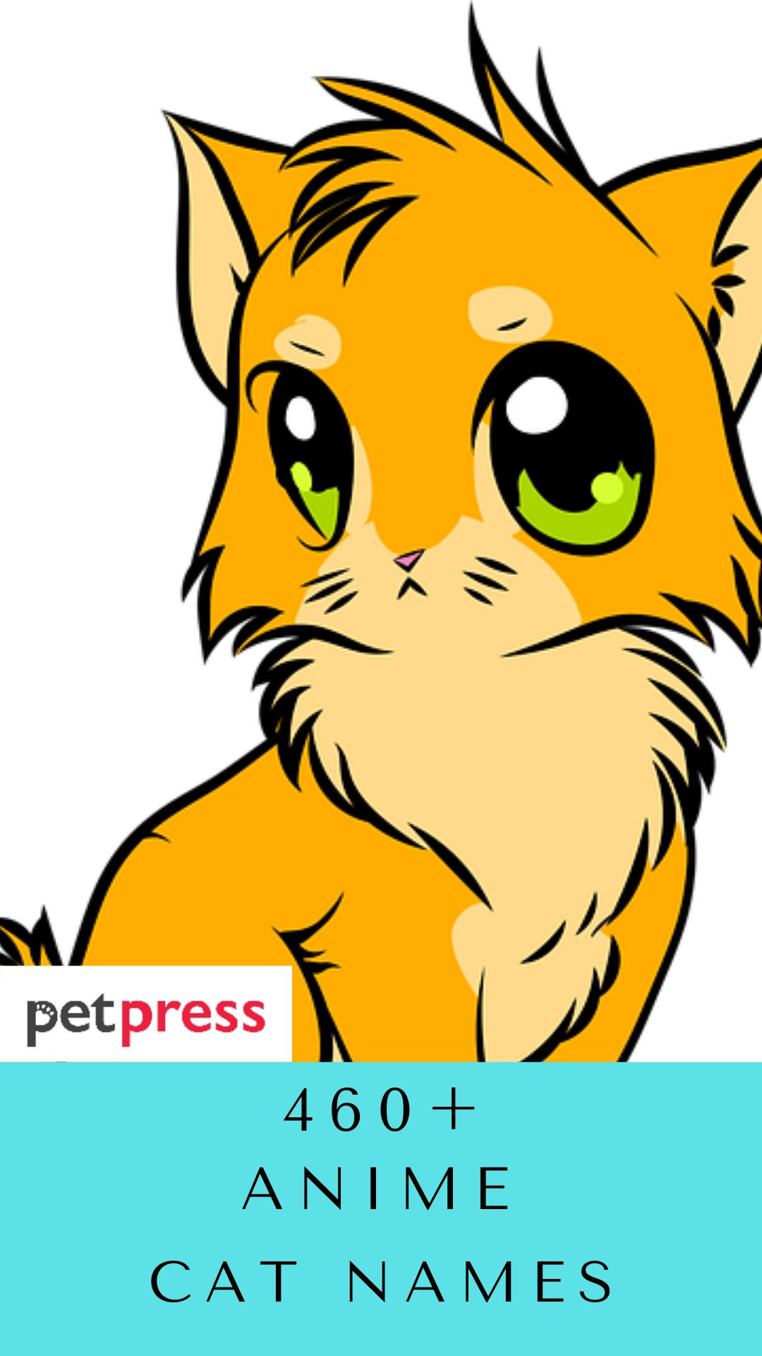 anime-cat-names