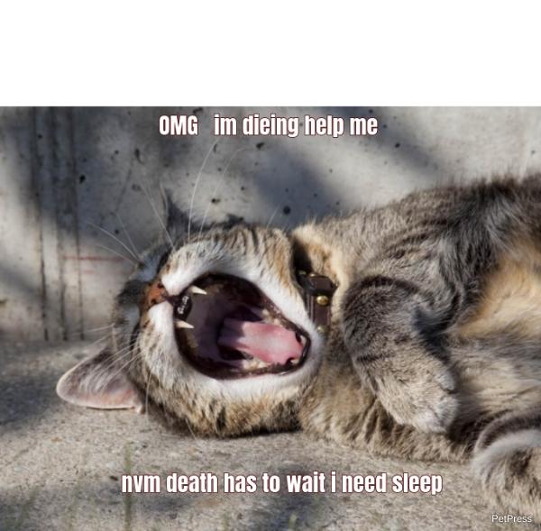 OMG im dieing help me... nvm death has to wait i need sleep