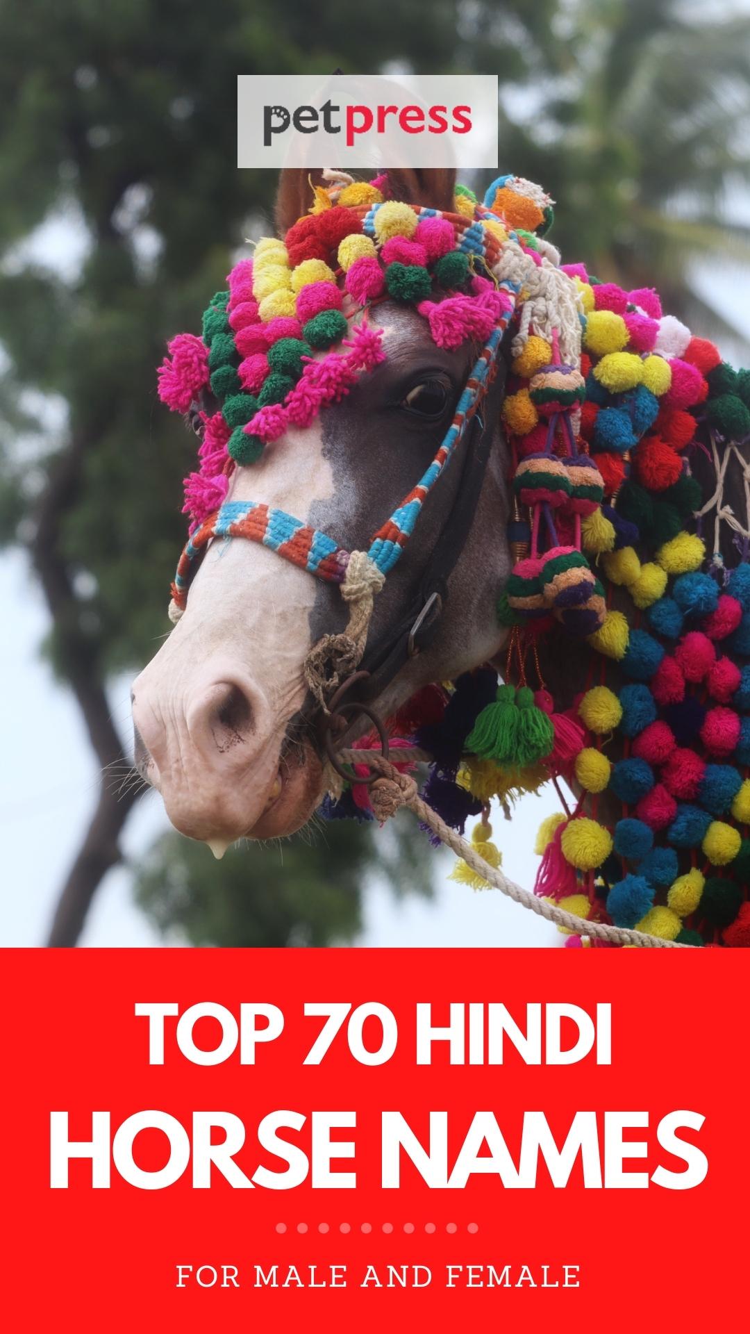 hindi horse names