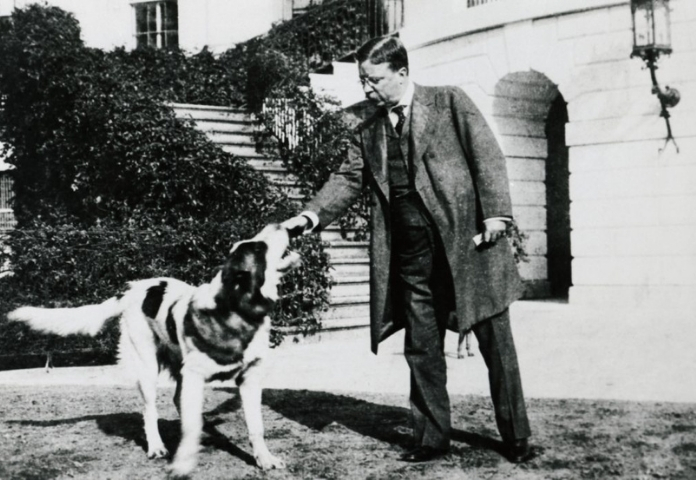 Rollo and Teddy Roosevelt