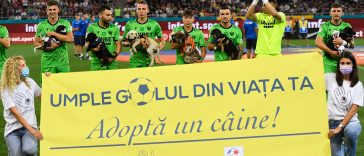 How Romanian Soccer Players Helped Local Shelters with Pet Adoption