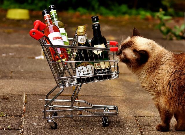 liquor-cat-names