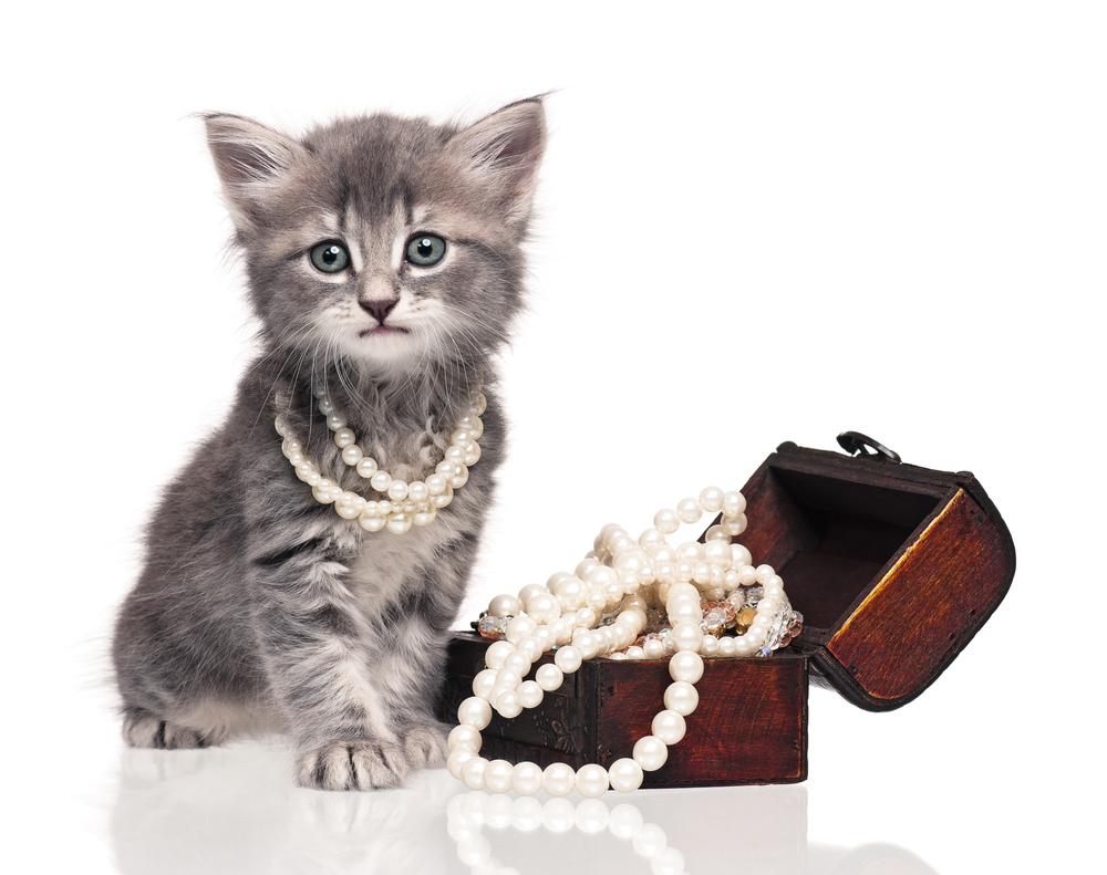 female-gemstone-cat-names