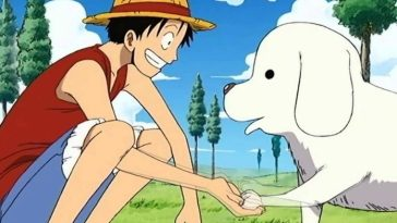 50+ One Piece Dog Names - Best Name Ideas Based on One Piece Characters