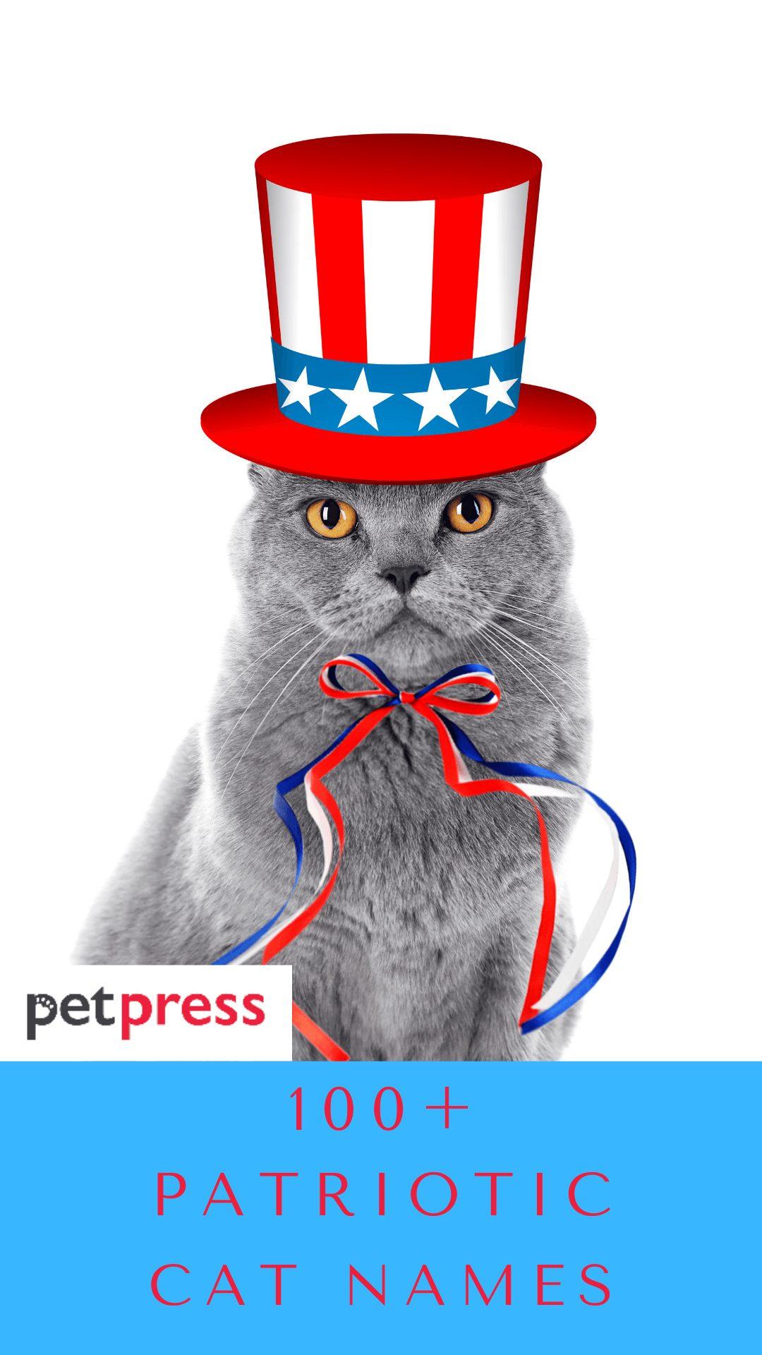 patriotic-cat-names