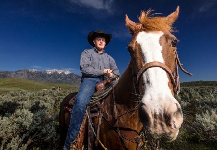Best Ranch Horse Names