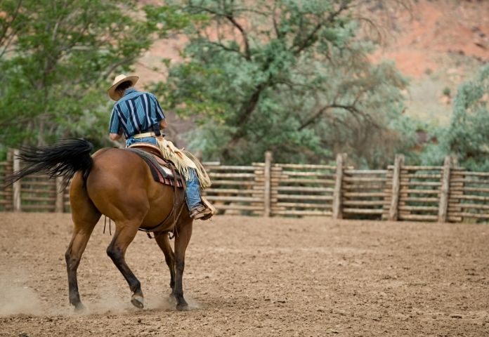 Male Ranch Horse Names
