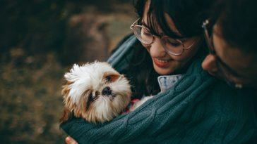 `14 Animal Lovers Gift Ideas